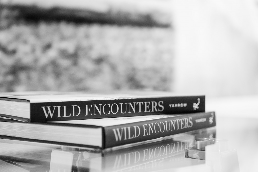 Wild Encounters - David Yarrow