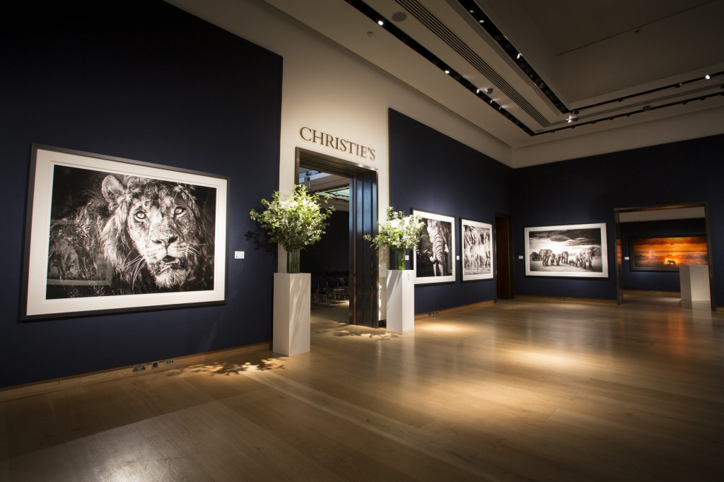 David Yarrow Christies Event Feature