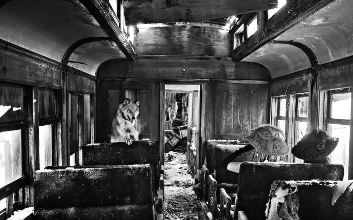 Ride the Ghost Train