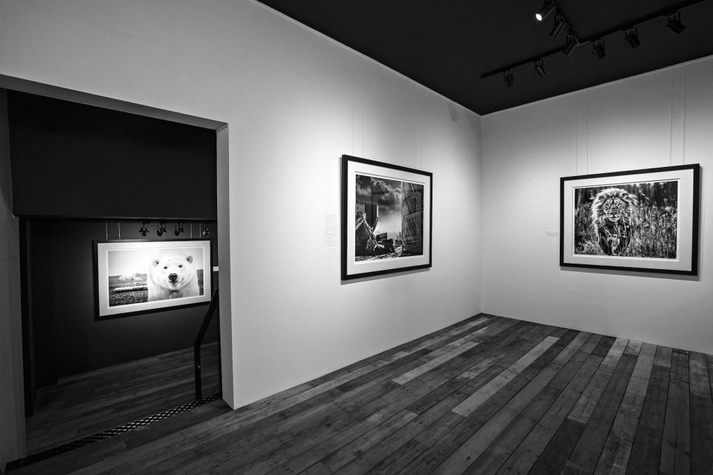 David Yarrow at Kunsthuis 2