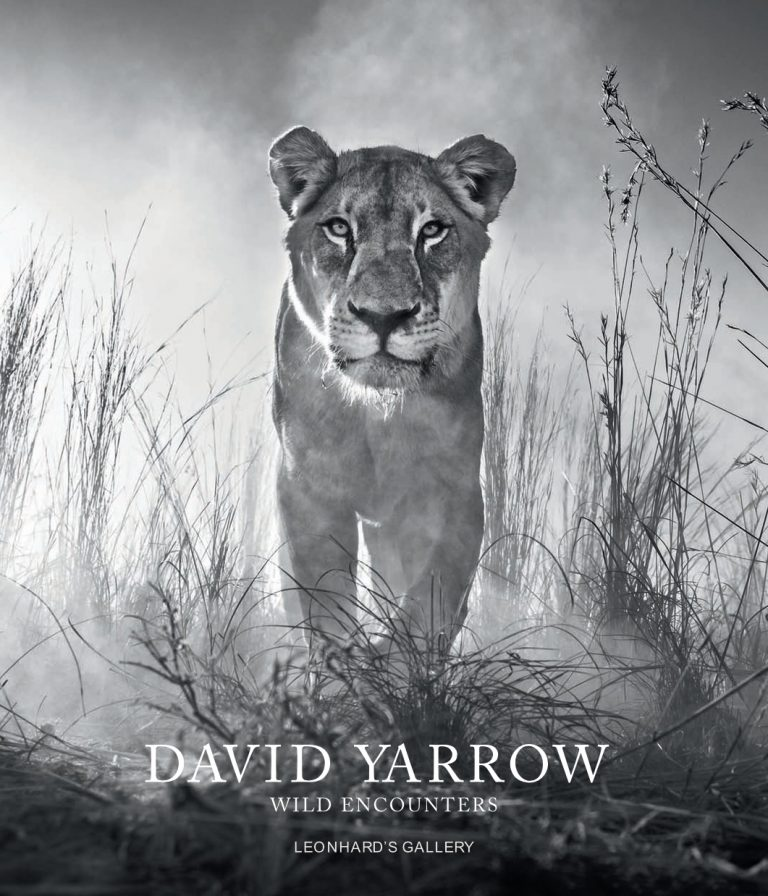 david-yarrow_invitation_leonhards