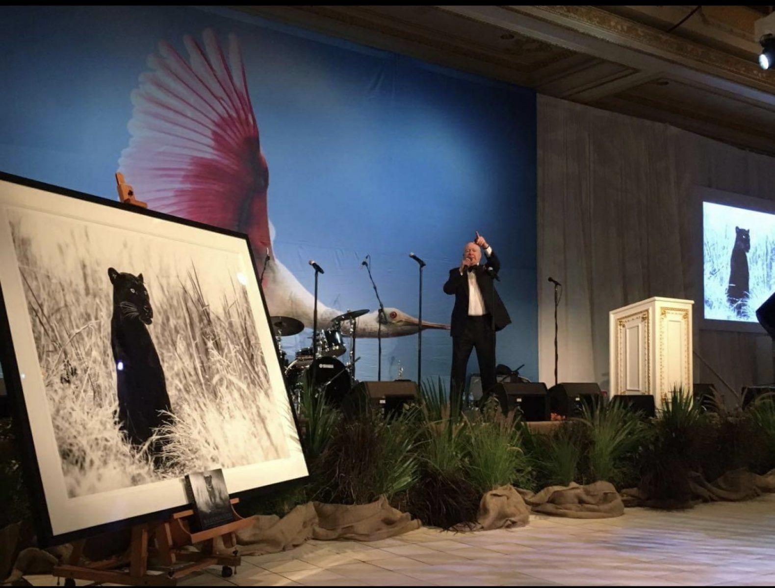 Bagheera Raises $33,000 At The Palm Beach Conservation Gala