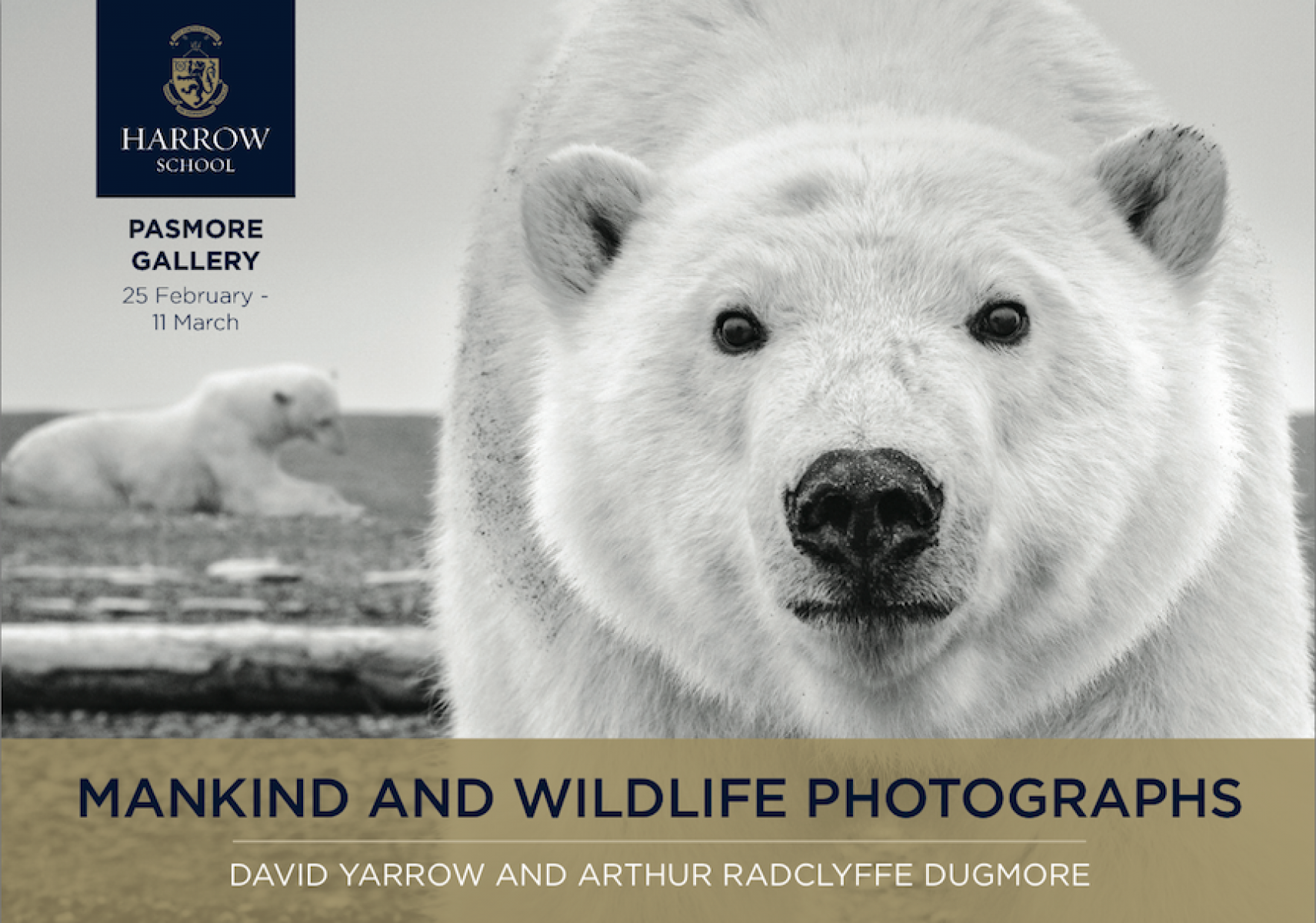 David Yarrow Exhibition At Harrow School