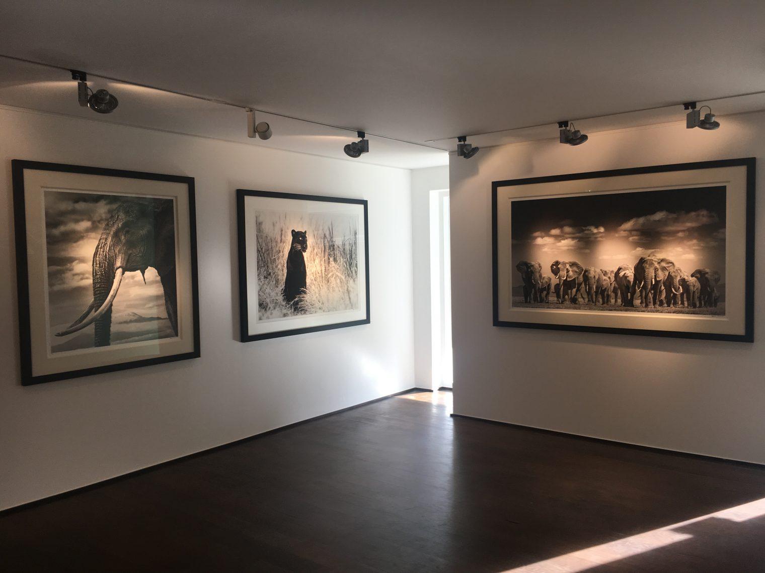 La Photographie Galerie (Knokke Seaside Gallery – Knokke, Brussels)