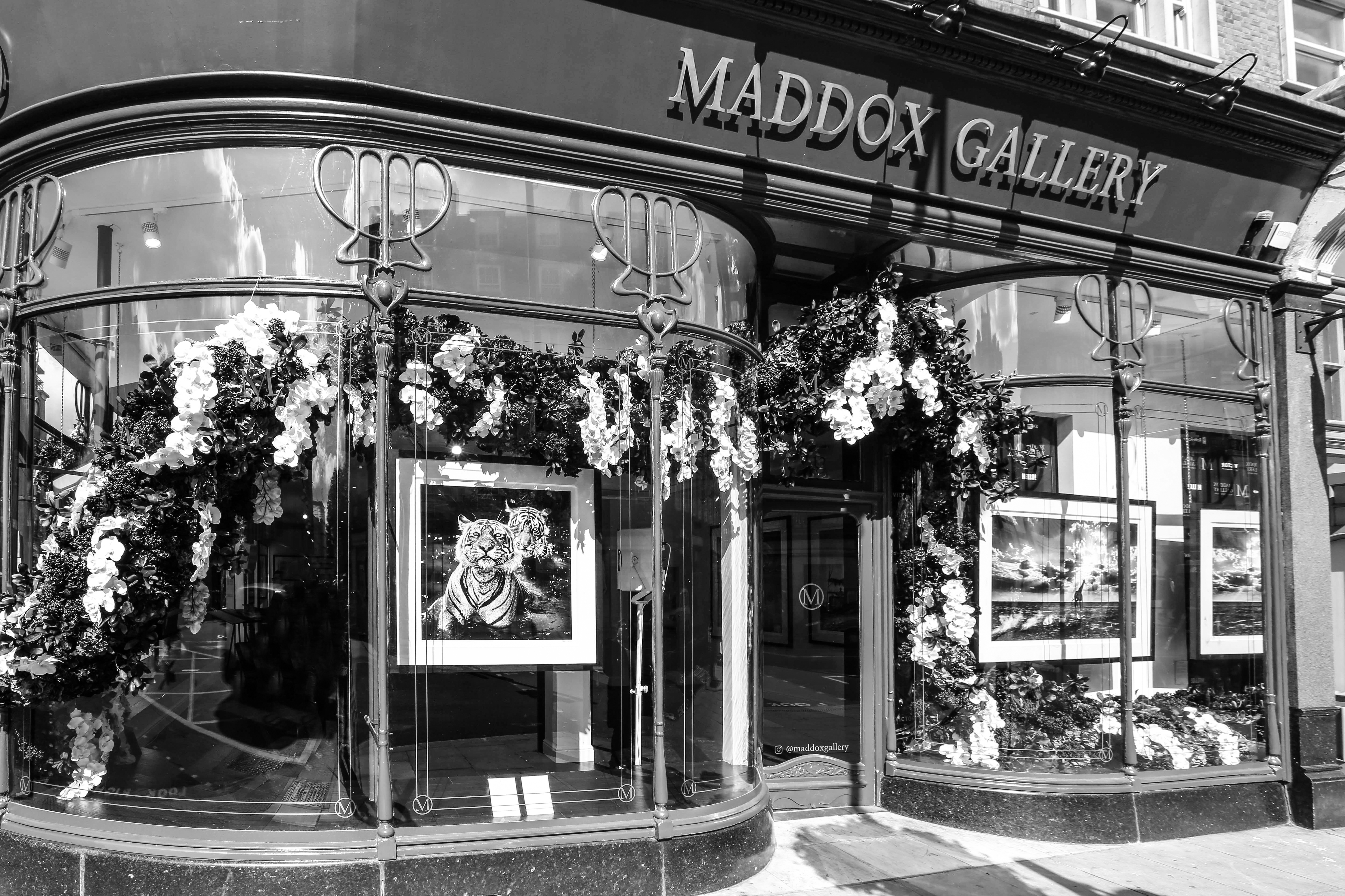 David Yarrow Untouchables exhibtion at Maddox Gallery, Westbourne Grove
