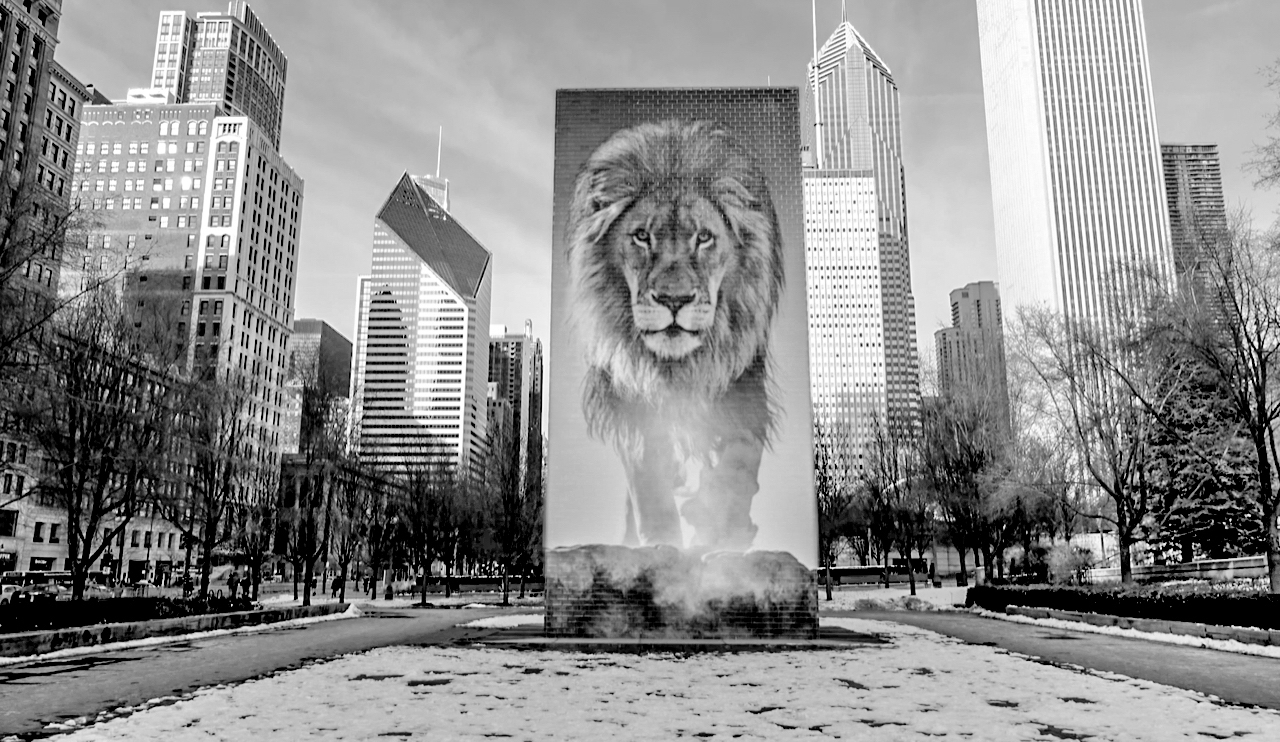 David Yarrow CHICAGO_-2