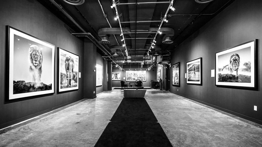 Izzy Gallery - Toronto