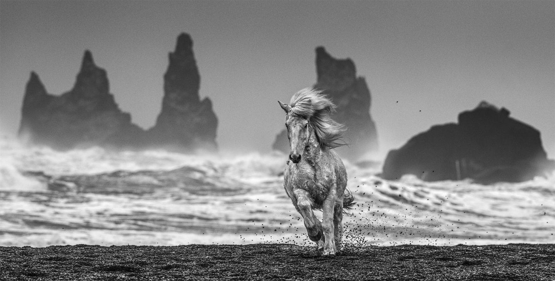 2018 Expedition Black >> David Yarrow Photography