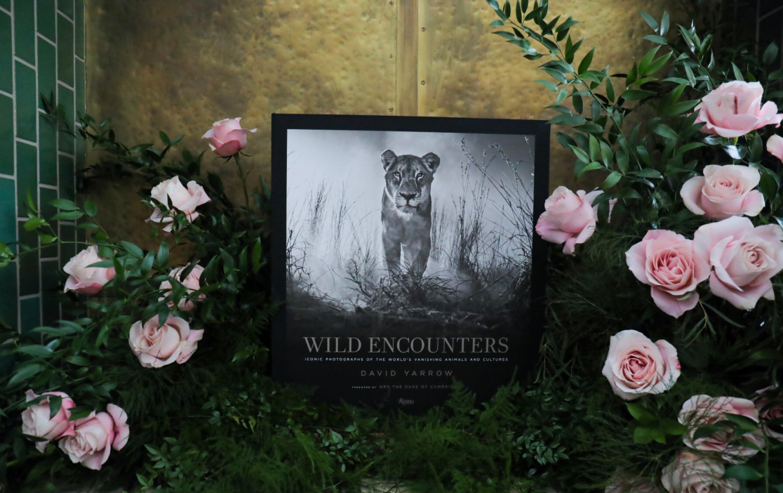 Wild Encounters Deluxe Edition