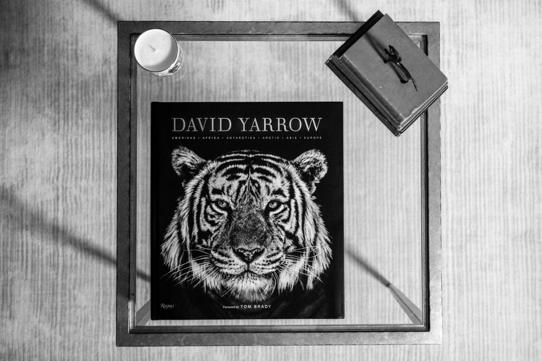 David Yarrow Stills29